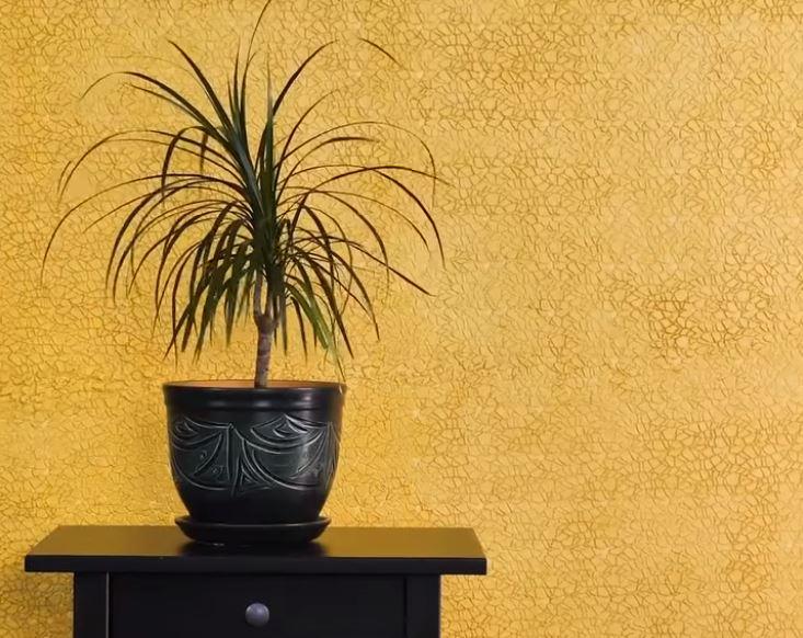 Thêm hiệu ứng nhũ vàng lấp lành cho bức tường thêm ấn tượng